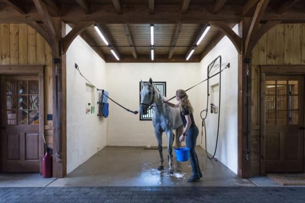 stalls for horse barn construction