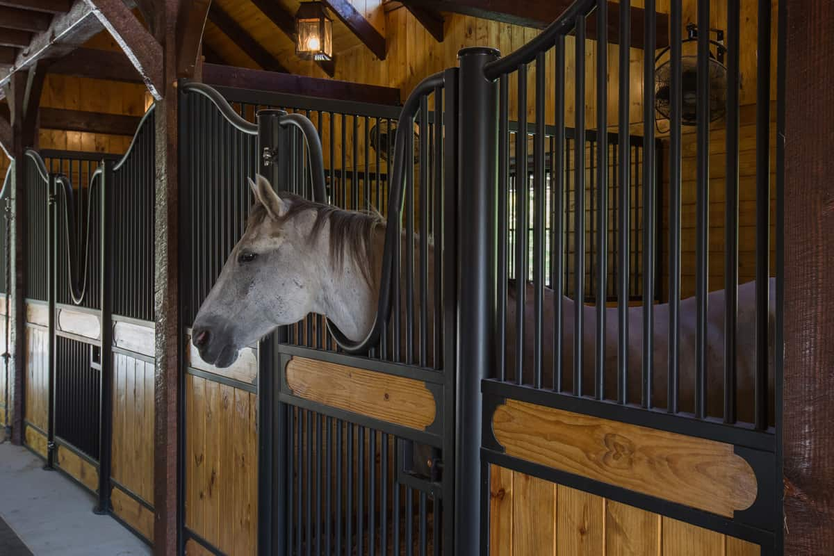 horse stall construction