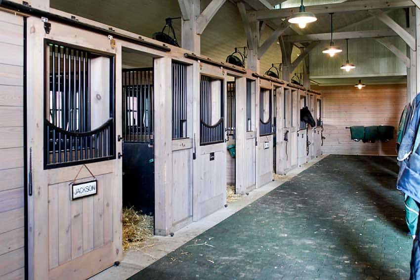 barn horse stalls in the summer